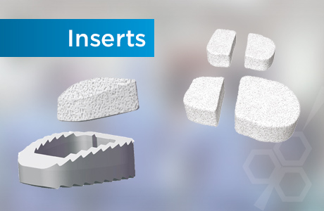 Inserts - MBCP™ Synthetic Bone Graft Substitute